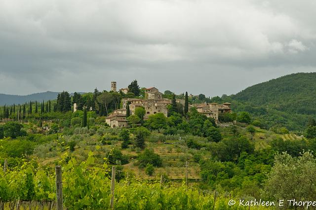 Greve in Chianti, Tuscany, Italia - 052714-005