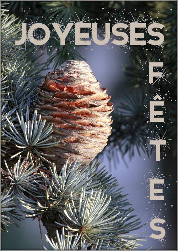 Joyeux Noël 46040088.a1c38b47.800