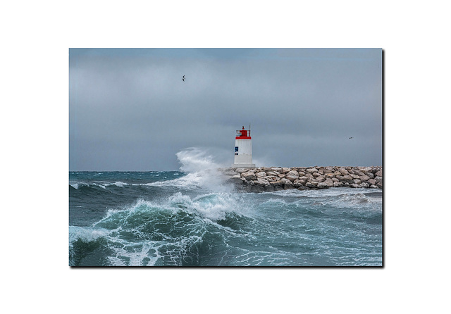 Le chant de la mer.
