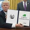 Trump-Esperanto — trukita foto / trucage photo