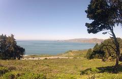 San Francisco Presidio View (0009)