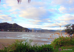 Low Tide At Whitianga