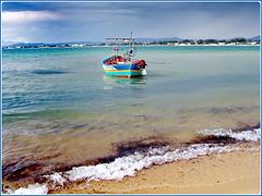 Hammamet : una bella barca pronta per andare a calare la rete