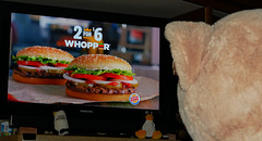 Our 53 Inch Costco Bear Watching His Favorite Advertisements on Television