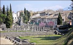 Vaison-la-Romaine (84) 27 mars 2012.