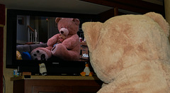 Bernadette and Bear