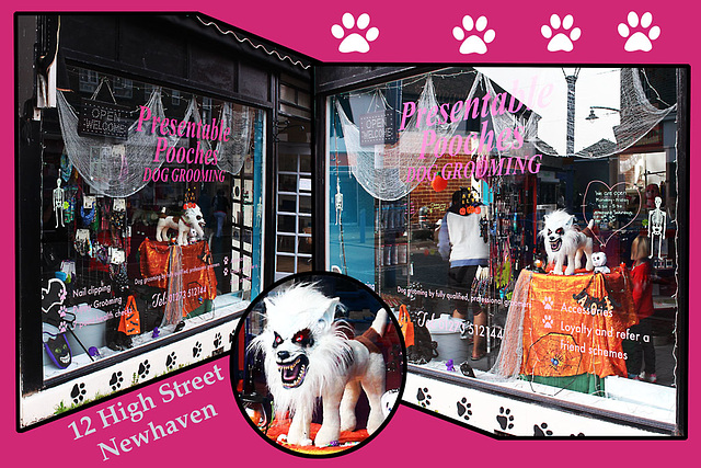 Ready for Halloween - 12 High Street - Newhaven - 10.10.2015