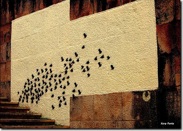 Mural dos Pássaros - Coimbra