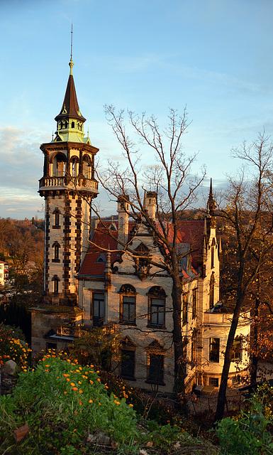 Goldener November in Dresden