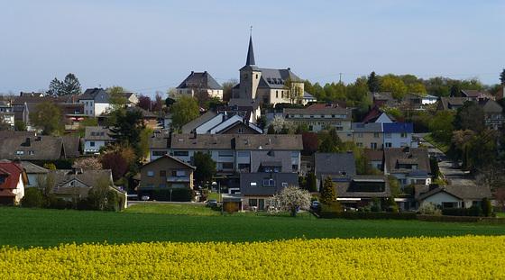 DE - Grafschaft - Blick nach Karweiler