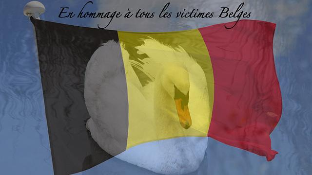 Pour tous nos amis Belges