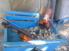 violon ail charette
