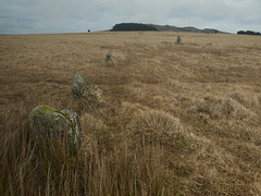 Fernacre stone circle, Bodmin Moor
