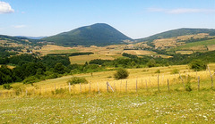 Last summer landscape!