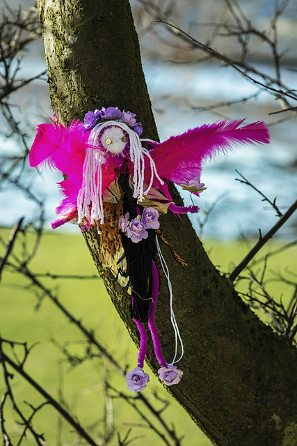 Wee Fairy with Pink Wings