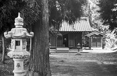Shrine grounds