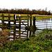 Flooded Fences