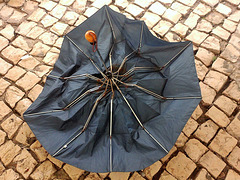 Look at what will happen to our umbrellas this weekend