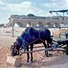 Caesarea Aqueduct - Israel in 1972