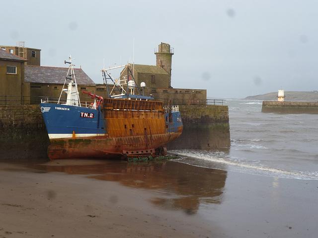 whn - TN2 beached
