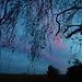 A la tombée de la nuit en Beauce