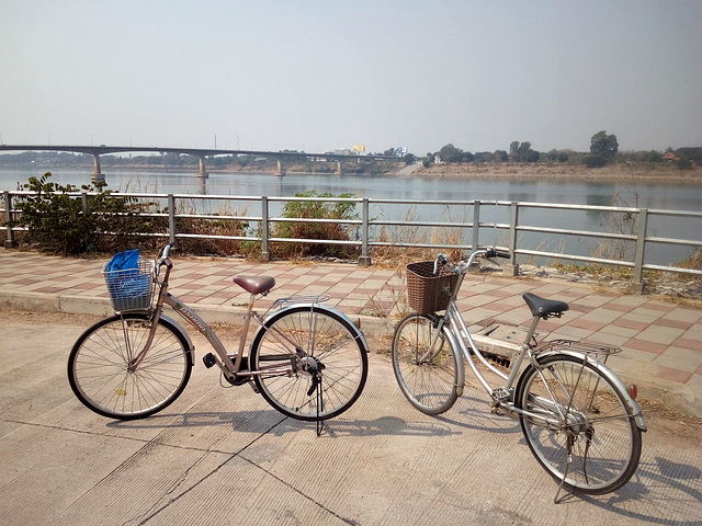 Nos vélos de location / Our rented bikes