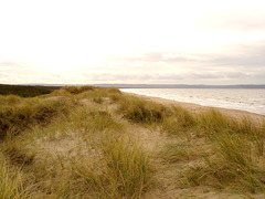 FFK beach