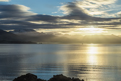 Ofotfjord