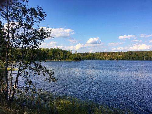 Der Almeshultasjön zwischen Solberga und Eksjö in Schweden // see 6242