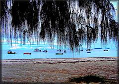 Seychelles : laggiù a ds si vede l'isola 'la digue'- baia St. Anne a Praslin.-