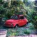 Fiat 500 als Kinderspielplatz in unserem Garten, abgemeldet 1981