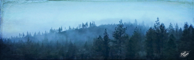 fog-on-the-hill-pano