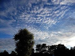 ciel du couchant
