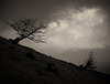 Wales - Brecon Beacons