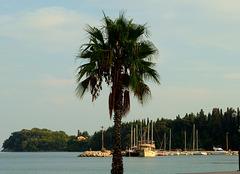 Corfu: Looking towards Dassia from Ypsos