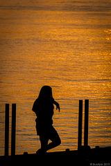 Bellezas beim Fotoshooting - P.i.P. (© Buelipix)