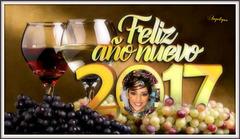 Que le chemin de l'année 2017 soit parsemé d'éclats de joie, de pétales de plaisir, qu'il soit éclairé par la l'étincelle de l'amour et la lueur de l'amitié. Bonne et heureuse année !