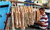 Câmara De Lobos : il pescatore controlla l'essicazione dei pesci appesi in mezzo alle barche