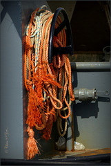 Orange Ropes...