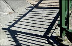Petrified fence?