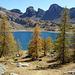 ...le Lac d'Allos...au coeur du Parc du Mercantour,le plus grand lac d'altitude (2228m) d'Europe.Il abrite la truite fario et l'omble chevalier.