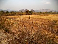 Les charmes pittoresque du Laos rural / Laotian fence