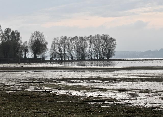Blick auf eine Bucht im Bodensee