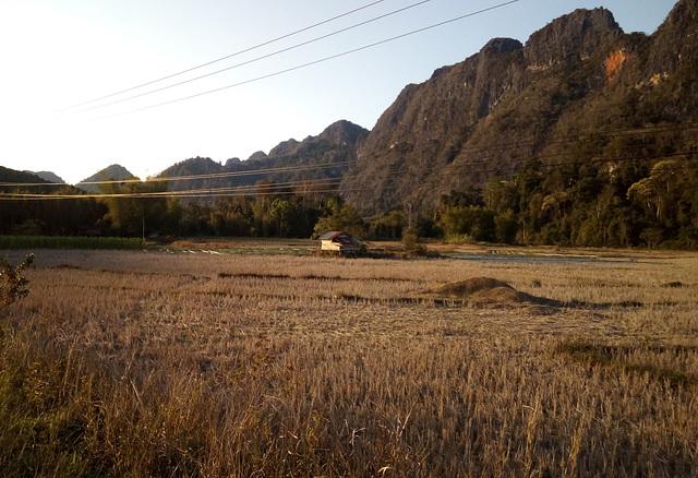 Agriculture électrique dans la campagne laotienne