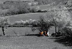le tracteur abandonné- HFF