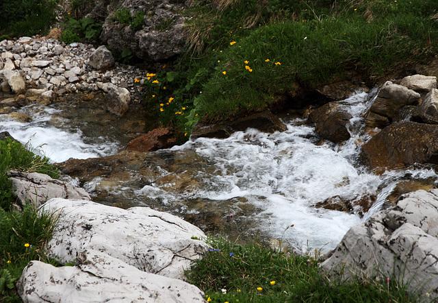 Alpenbach