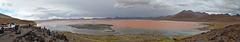 Bolivian Altiplano, Panorama of the Laguna Colorada