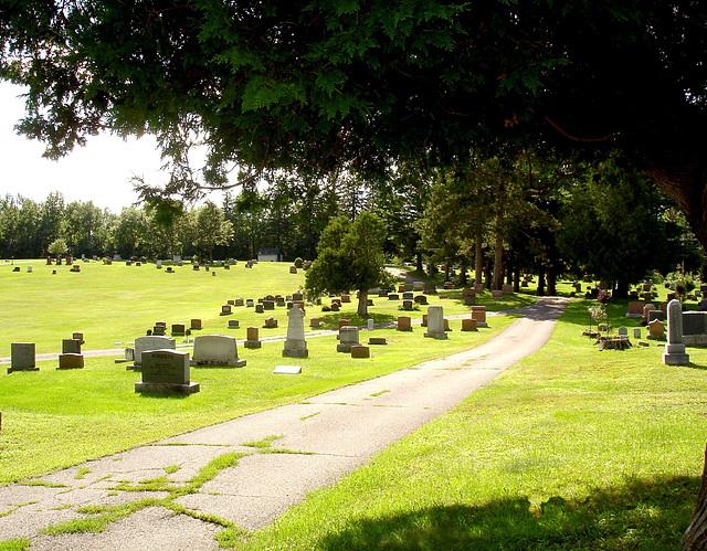 Funeral greenery