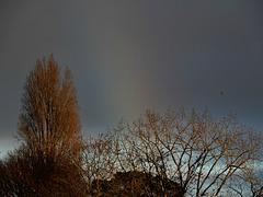 couleurs d'hiver entre les averses et les arc en ciel