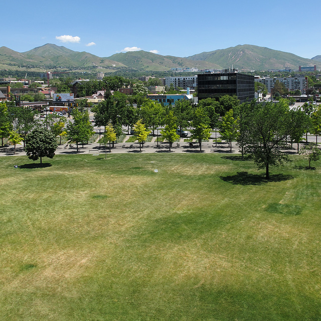 Gone lawnmad in downtown Salt Lake City.